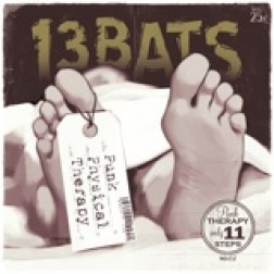 13 BATS  s/t   Physical therapy 13 BATS  s/t   Physical therapy